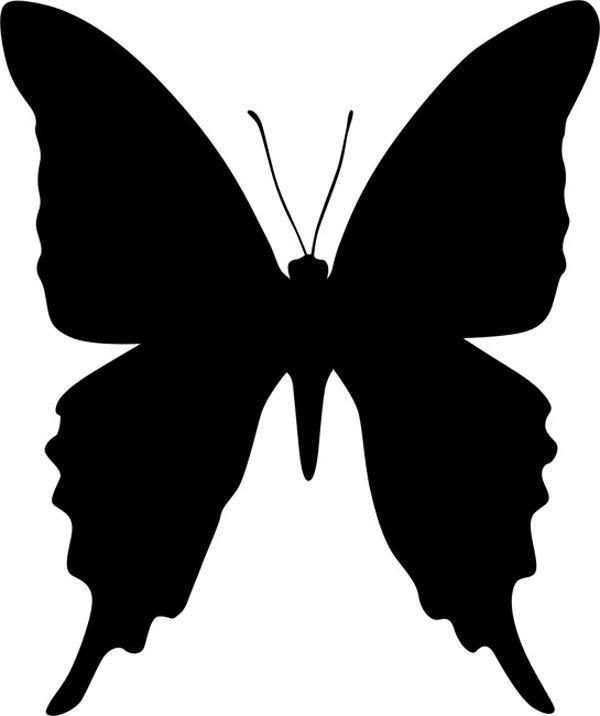 Бабочка с вытянутыми крыльями