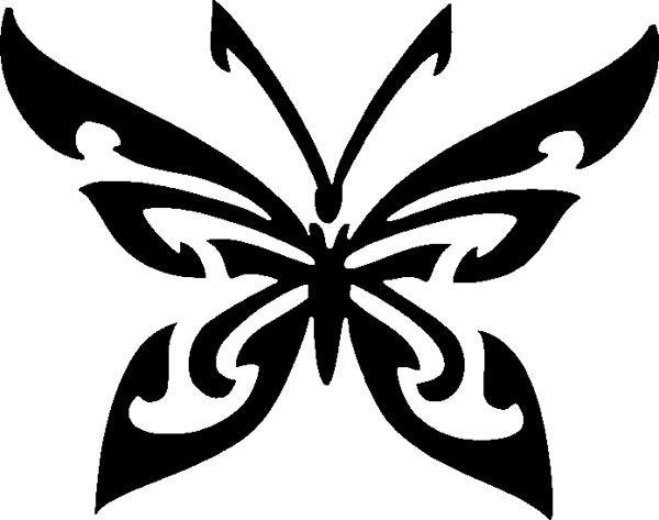 Бабочка с узорами и острыми усиками
