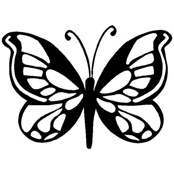 Бабочка с узорами на крылышках