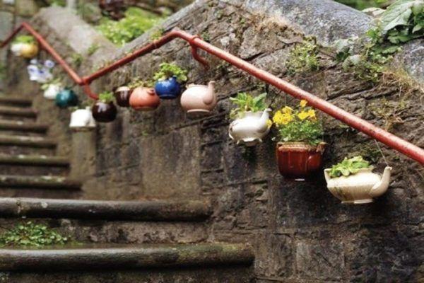 Горшками для цветов может послужить любая посуда