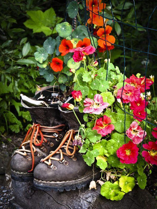 Интерьер в виде обуви с цветами внутри