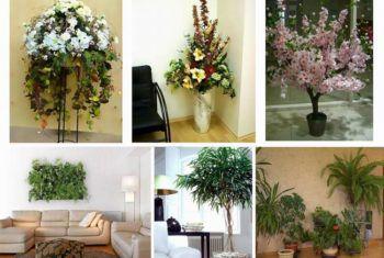 Искусственные растения для домашнего интерьера