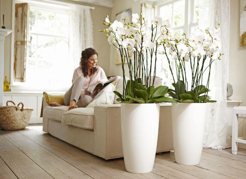 Искусственные цветы создают уютную обстановку, придавая интерьеру заданный стиль и законченный вид