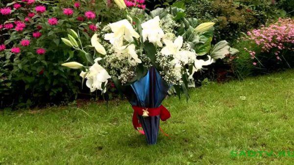 Не раскрытый зонтик с цветами