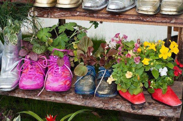 Старая обувь в качестве цветочных горшков